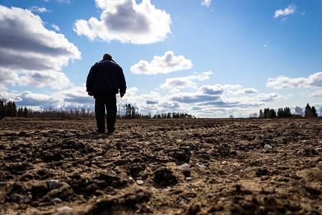 Ari Kähkösen pelloille pitäisi istuttaa taimet vapun jälkeen, mutta tilan kausityöntekijät eivät pääse Suomeen.