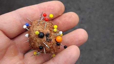 Neuloilla lävistetty lihapulla on järkyttänyt lemmikkien omistajia Myyrmäessä.