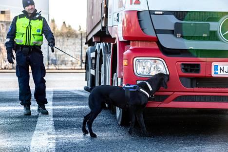 Koiranohjaaja Jukka Malinen ja huumekoira Toma tekivät tarkastusta Vuosaaren satamassa keskiviikkona.
