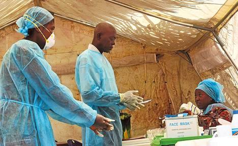 Hoitajat ottivat verinäytteitä Kenemasssa Sierra Leonessa kesäkuun lopussa.