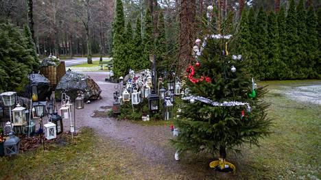 Muistolehdolle ilmestyy joka vuosi valmiiksi koristeltu joulukuusi.