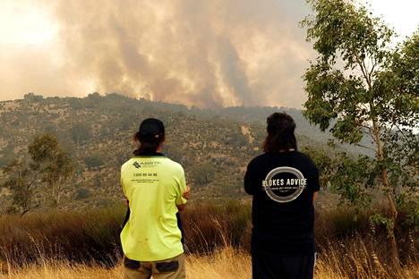 Ihmiset seurasivat Australian Perthissä roihuavaa metsäpaloa helmikuun alussa.