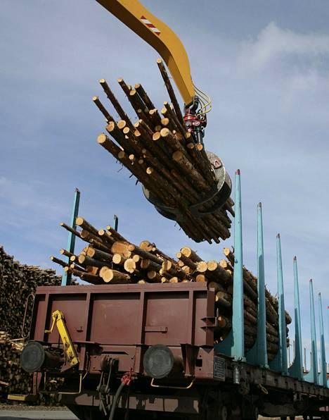 Metsäntutkimuslaitos ennustaa raakapuun hinnan nousevan.