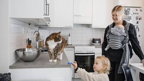Pienessä kodissa on yllättävän tilava keittiö.