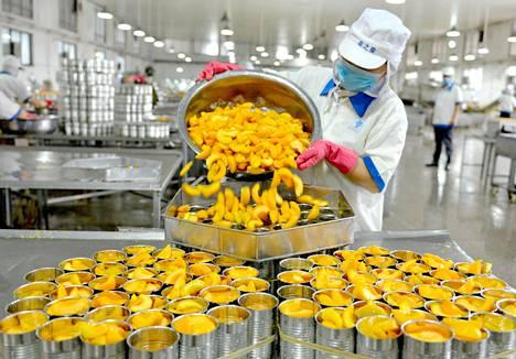 Työntekijä purkitti säilykepersikoita vientiin Xiayissa Kiinassa sunnuntaina.