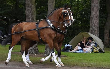 Hyvin varustautuneet naiset seurasivat Ascotin laukkakilpailuihin menijöitä lauantaina.