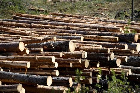 Sahateollisuuden tärkeimmät sivutuotteet ovat puru ja kuori, joiden menekki on tärkeä tekijä sahojen kannattavuuden kannalta.