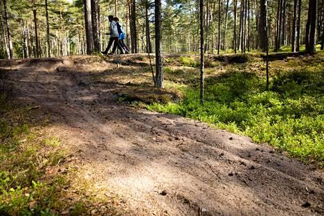 Maastopyöräilyn aiheuttamia jälkiä Kallahden luonnonsuojelualueella.