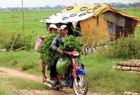 Kambodžassa mies ajoi moottoripyörää kyydissään vaimo ja kasa vihanneksia. Pariskunnan on tarkoitus myydä vihannekset Phnom Penhin torilla.