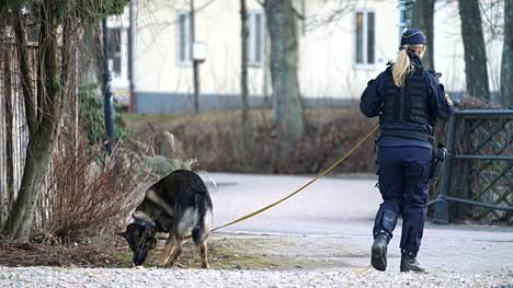 Poliisi partioi koiran kanssa Vetlandassa keskiviikkona tapahtuneen hyökkäyksen tapahtumapaikalla.