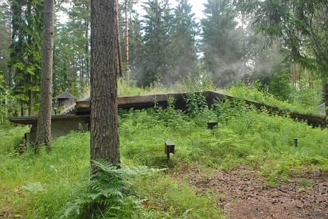 Ruohokattoinen luolasauna maastoutuu metsämaisemaan.