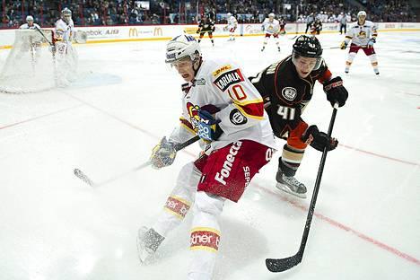 John Klingberg (10) pääsi maistamaan NHL-vauhtia harjoitusottelussa Anaheimia vastaan.
