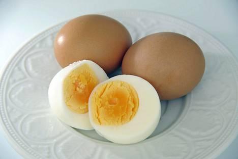 Kananmuna Terveellisyys