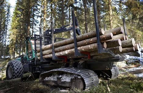 Puuta kaadettiin Metsä Groupin Äänekosken biotuotetehtaan tarpeisiin Uuraisilla maaliskuussa 2017.