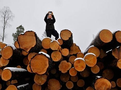 Greenpeacen metsävastaava Matti Liimatainen otti valokuvia Syvä-Äylän alueen hakkuiden jäljistä.