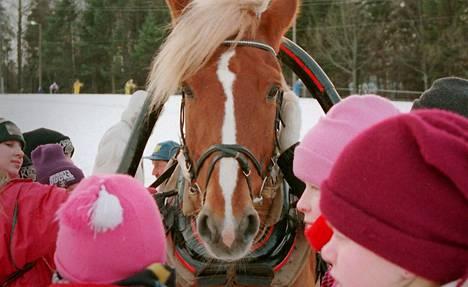 Hevosen vasen silmä on yhteydessä oikeaan aivopuoliskoon, joka käsittelee uhan ja vaaran tuntemuksia.
