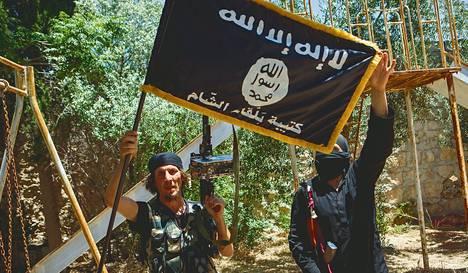 Ääri-islamistisen Isis-järjestön taistelijat poseerasivat Aleppossa viime vuoden heinäkuussa.
