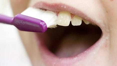 Hampaat kannattaa harjata silloin kun on virkeä ja keskittynyt.