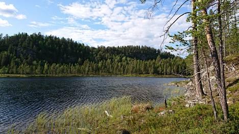 Luonnonperintösäätiön uuden suojelualueen Seitasaaren sisällä on oma pieni järvensä, Hevosaitajärvi.