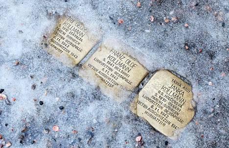 Kollmannien muistokivet pilkistivät jään alta Munkkiniemen puistotiellä tammikuussa.