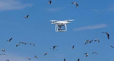 Drone lenteli Välimeren yllä Etelä-Ranskassa viime lauantaina.