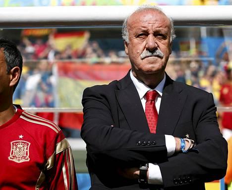 Vicente Del Bosque haluaa jatkaa Espanjan peräsimessä.