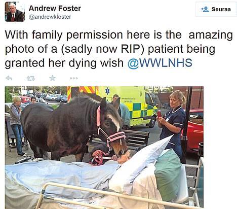 Paikallisen sairaalasäätiön johtaja Andrew Foster latasi Twitteriin kuvan Sheila Marshin ja Bronwen-hevosen kohtaamisesta.