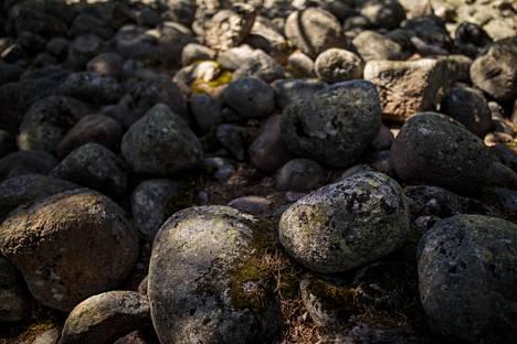 Meri-Rastilan muinaisrantakivikko on täynnä pyöreiksi hioutuneita suuria kiviä.