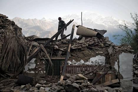 Nepalilaismies käveli tuhoutuneen talonsa katolla Barpakin kylässä 4. toukokuuta, runsas viikko tuhoisan maanjäristyksen jälkeen.