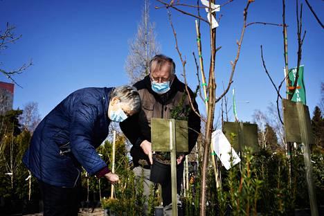 """Marjatta ja Jussi Toppila asuvat keskustassa, mutta mökillään Etelä-Savossa heillä on puutarha, jota he ovat laittaneet jo parikymmentä vuotta. Puutarhamyymälä Muhevaiseen he tulivat mukanaan pitkä lista taimista ja tarvikkeista, joita he tarvitsevat. """"Työnjako on, että Jussi suunnittelee ja minä kitken"""", Marjatta Toppila kertoo."""