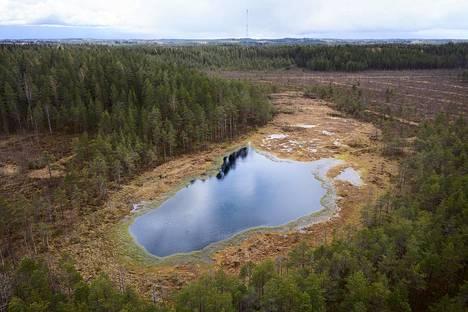 Metsätalouden tarpeisiin aikoinaan kuivatettu Kirkkolamminsuo ennallistettiin 2000-luvun alussa. Nyt Liesjärven kansallispuistoon kuuluva alue on taas suota.