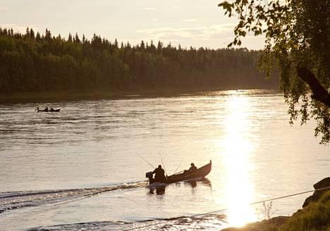 Kalastajat narrasivat lohia kesällä 2014 Tornionjoen Lappean suvannossa. Vuonna 2014 jokeen nousi jopa 10 000 lohta vuorokaudessa.