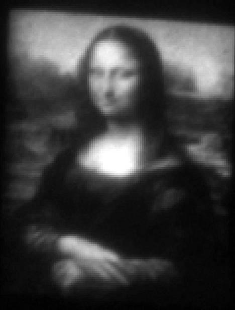 Georgian teknillisen korkeakoulun tutkijat maalasivat Mini Lisan, jonka leveys on paljon pienempi kuin ihmisen hiuksen leveys. Mini Lisa on nähtävästi maailman pienin maalaus.