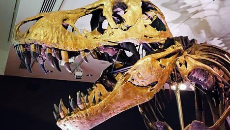 Dinosaurusten Tuho