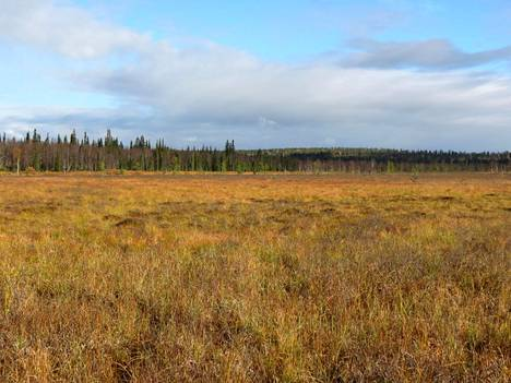 Helsingin yliopiston tutkijat kairasivat Sokliaavan suolla Lapissa 30 metrin syvyyteen ja vetivät ulos tuubin maaperää ja muinaista sedimenttiä.