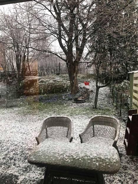 Märkä lumisade sai maan hetkellisesti valkoiseksi Pohjois-Helsingissä.