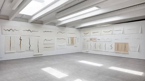 Simryn Gillin teokset Galleria Kohtassa ovat kunnianosoituksia kuolleille eläimille.