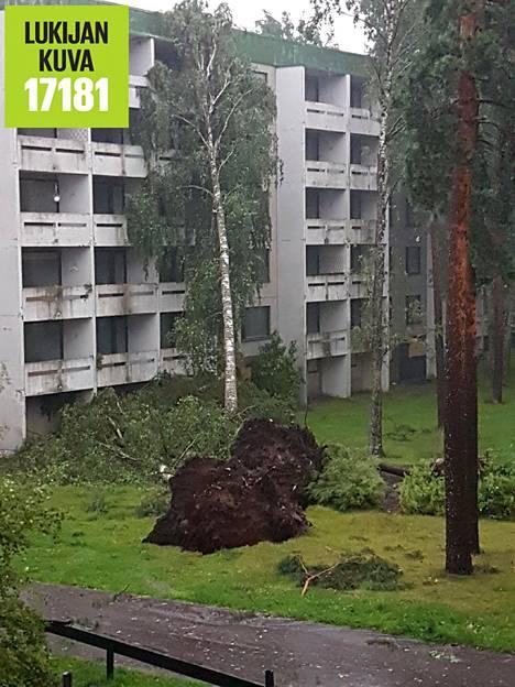 Myrsky saapui Martinlaaksoon ja kaatoi kolme puuta, joista yksi jäi nojaamaan vasten onneksi jo tyhjää kerrostaloa.