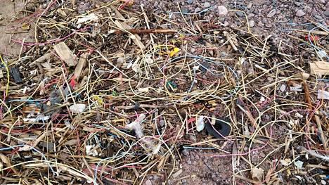 Eiran uimapaikan hietikolle on ajautunut paljon muoviroskaa.