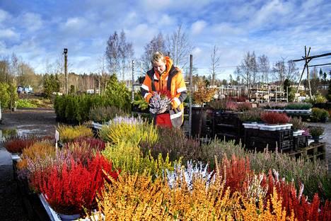 Puutarhayrittäjä Teemu Nikkasen puutarhayritys on uuden yrityskaupan myötä kasvien suhteen lähes omavarainen.