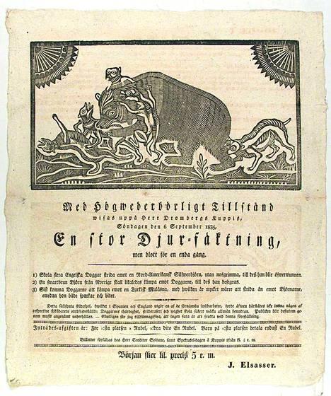 Turussa 1800-luvun alkupuolella vierailleen seurueen julisteessa mainostetaan karhujen taisteluita koirien kanssa.