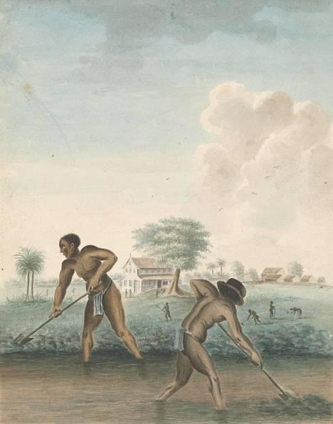 Tuntemattoman tekijän maalaus orjuutetuista miehistä ojia kaivamassa noin vuodelta 1850.