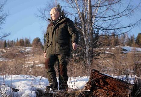 Presidentti Putin maastossa Siperian taigalla.