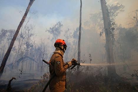 Brasilialainen palomies sammutti metsäpaloa Amazonilla sijaitsevalla União do Sulin alueella Mato Grosson osavaltiossa keskiviikkona.