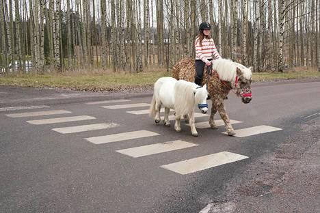 Karoliina Aalto ratsastaa Romantikalla kauppaan. Vieressä kulkee shetlanninponi Joonas.
