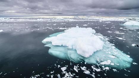 Napajäät ovat koulukirjaesimerkki ilmastonmuutoksen lietsovasta takaisinkytkentämekanismista. Sula musta meri imee auringon säteilyenergiaa itseensä, kun taas jää heijastaa sen takaisin. Niinpä Pohjoisen jäämeren sulaminen kesäisin entisestään kiihdyttää ilmastonmuutosta.