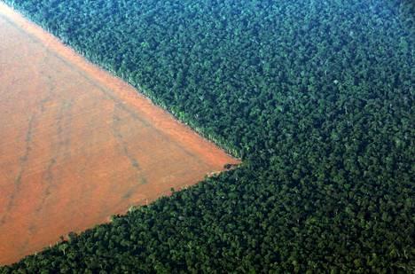 Mato Grosson alueella Brasiliassa vuonna 2015 otetussa ilmakuvassa näkyy Amazonin sademetsää sekä pelloksi raivattua aluetta.