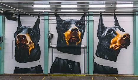 Kookkaan koirateoksen Concreateen loi oululaisarkkitehti Timo Tyynismaa.