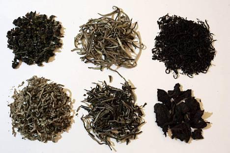 Tunne teesi: ylhäällä oolong, keltainen tee ja musta tee, alhaalla valkoinen, vihreä ja puerh-tee.