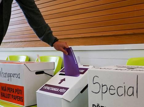 Uuden Seelannin parlamenttivaalien yhteydessä 17. lokakuuta järjestettiin myös kansanäänestyksiä.